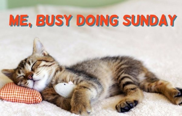 Me Busy Doing Sunday