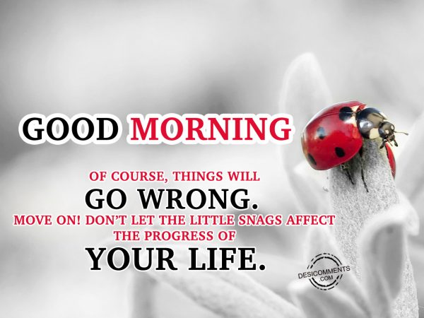 OF Course Things Will Go Wrong Move On Do not Let The Little Snags Affect The Progress Of Your Life.