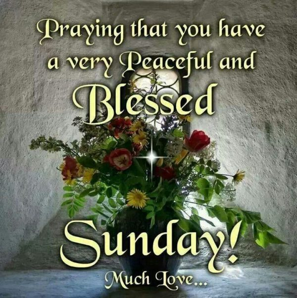 Praying That You Have A Very Peaceful And Blessed Sunday
