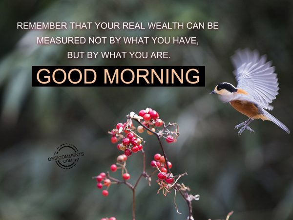 Remember That Your Real Wealth Can Be Measured Not By What You Have