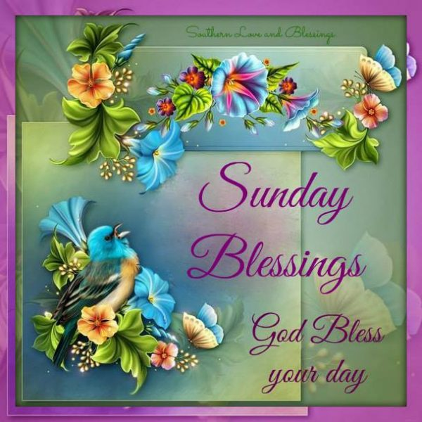Sunday Blessings God Bless Your Day