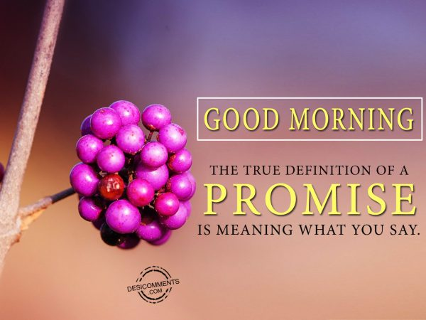 The True Definition of A Promise Is Meaning What You Say.