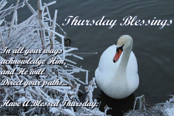 Thursday Blessings !