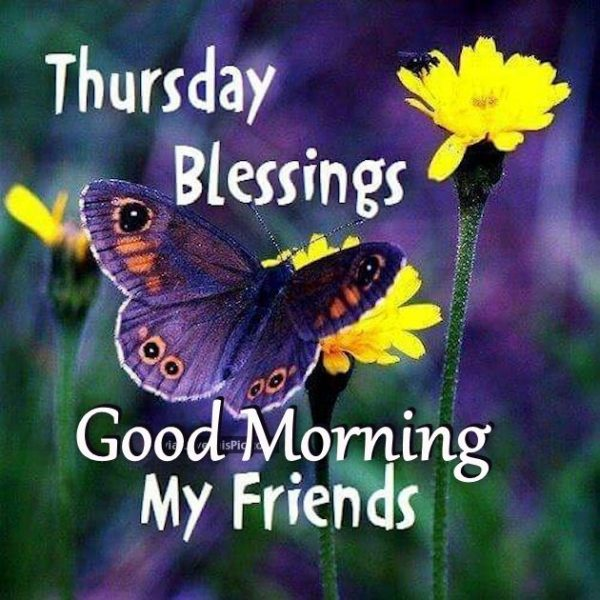 Thursday Blessings Good Morning My Friends