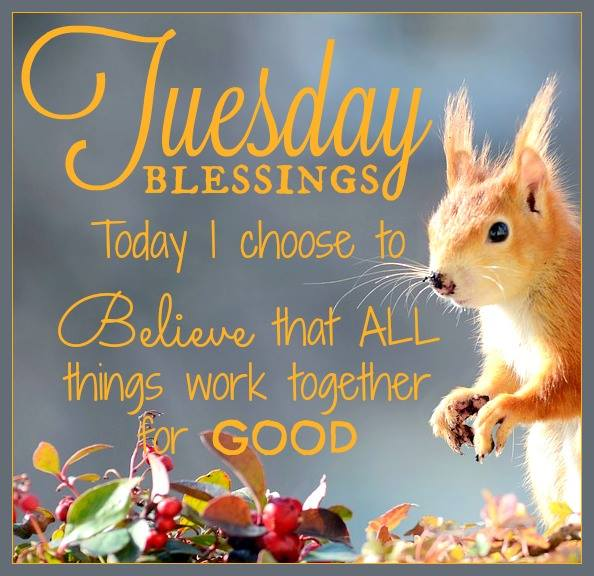 Today i choose to believe that all things work together for good