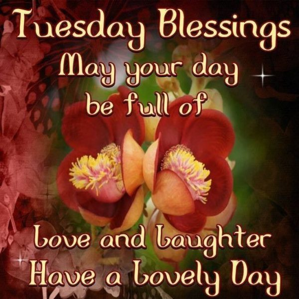 Tuesday blessings may your day be full of love
