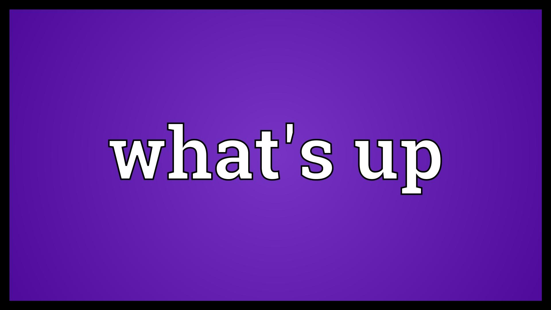 whats up Learn how to say what's up in spanish in this article spanishdict is devoted to improving our site based on user feedback and introducing new and innovative features that will continue to help people learn and love the spanish language.