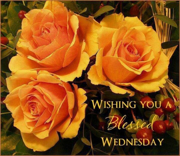 Wishing You A Blessed Wednesday
