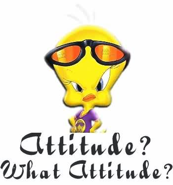 Attitude What Is Attitude Image