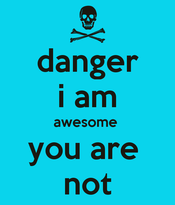 Danger I Am Awesome You Are