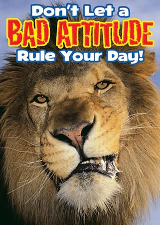 Don't Let A Bad Attitude Rule Your Day