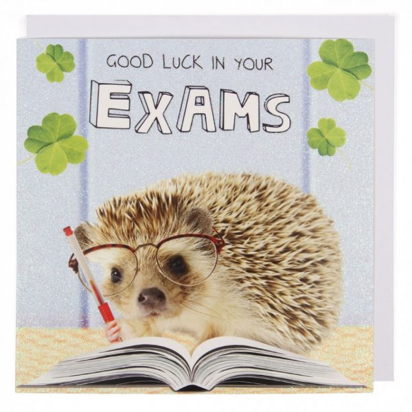 Good Luck In Your Exams Pic