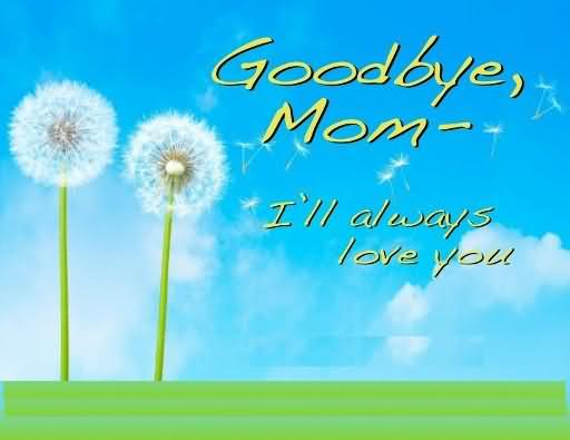 Picture: Goodbye Mom I'll Always Love You