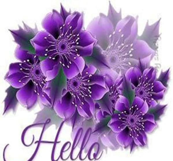 Picture: Hello Picture With Flowers