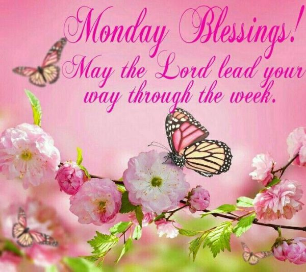May The Lord Lead Your Way Through The Week