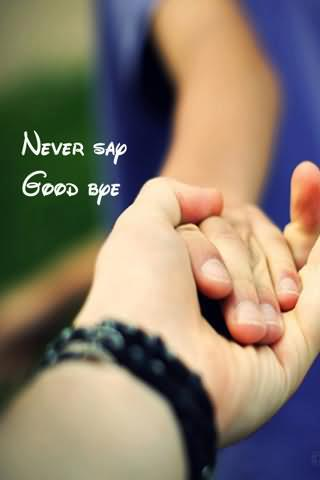 Never Say Good Bye