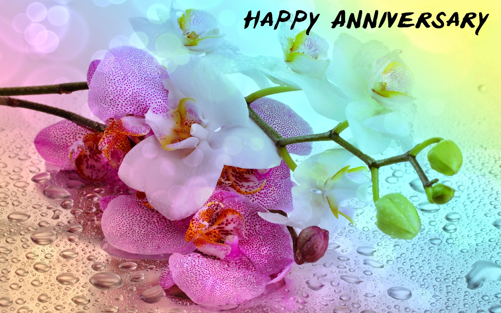 Wallpaper download marriage anniversary - Photo Of Happy Anniversary