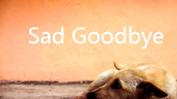 Sad Good Bye