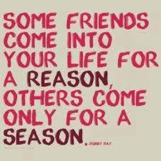 Picture: Some Friends Come Into Your Life For A Reason