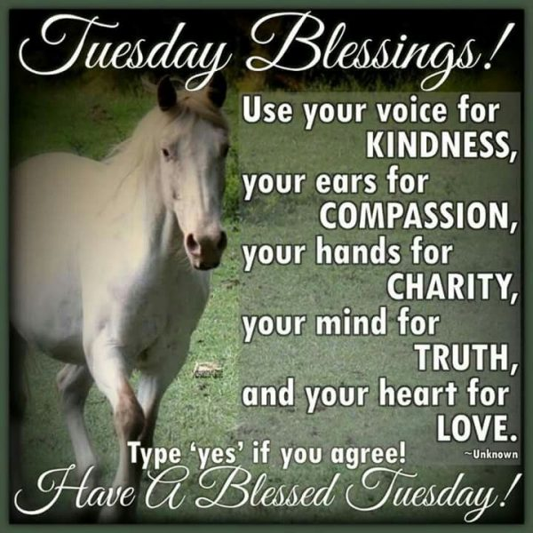 Tuesday Blessings, Have A Blessed Tuesday!