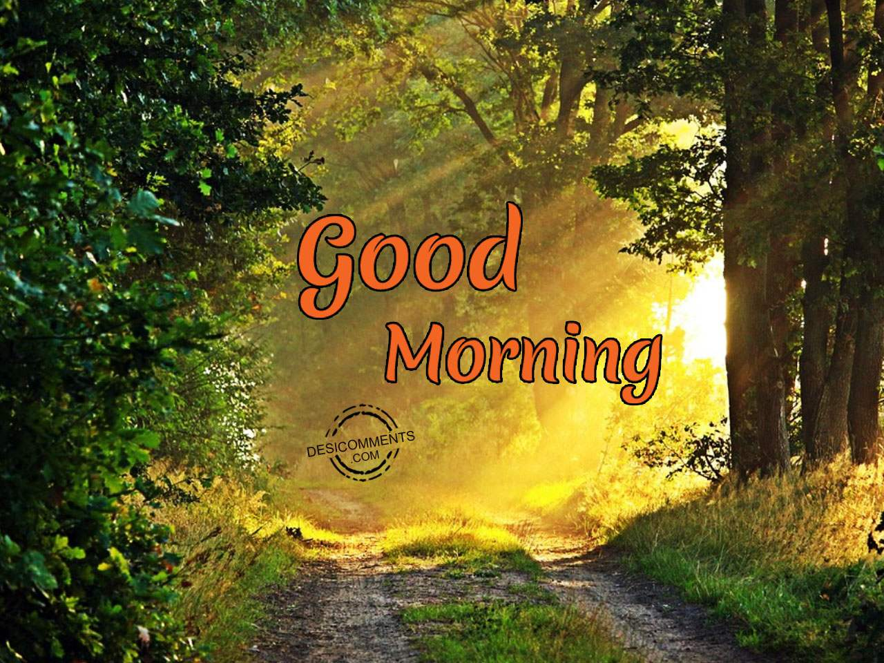 Good morning pictures images graphics page 14 for Good comments on pic