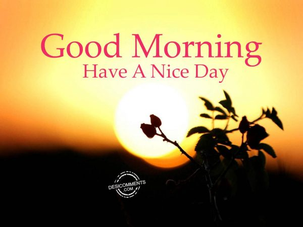 Have A Nice Day - Good Morning