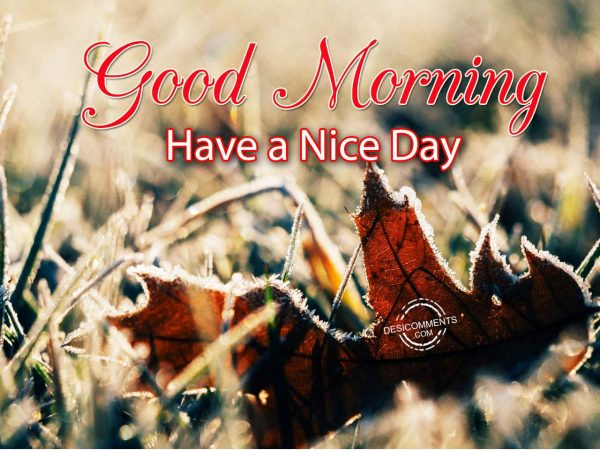 Image Of Image Of Good Morning - Have A Nice Day