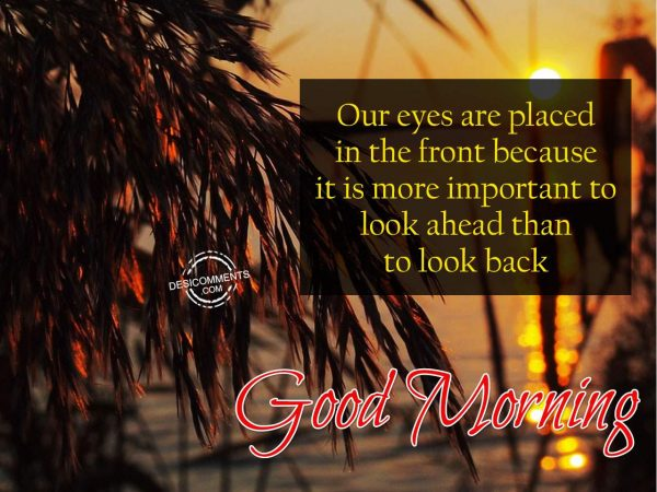 Our Eyes Are Placed In The Front - Good Morning