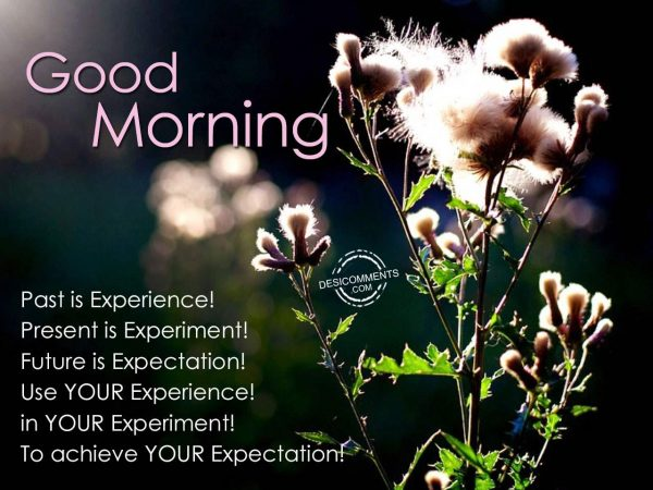 Past Is Experience - Good Morning