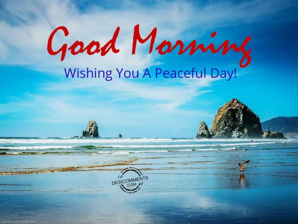 Photo Of Good Morning - Wishing You A Peaceful Day