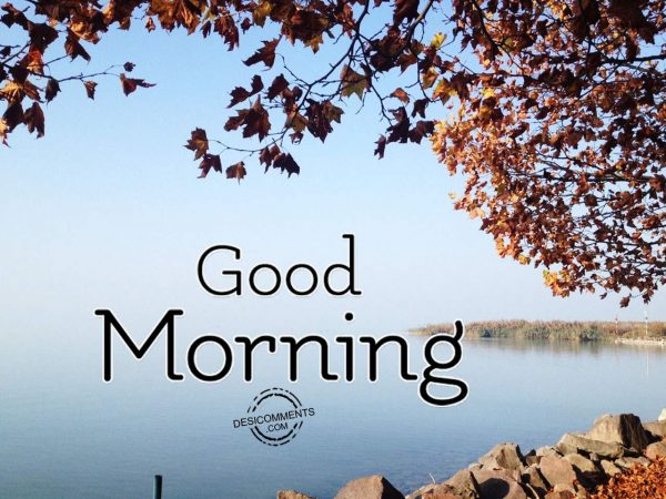 Wishing You A Great Day - Good Morning