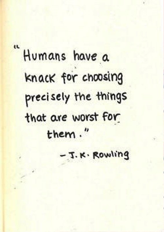Humans Have A Knack For Choosing