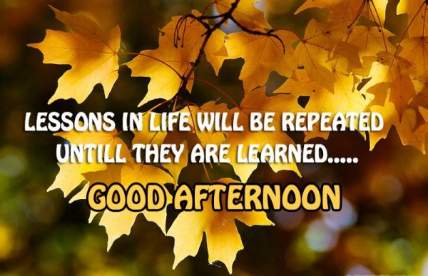 Lessons In Life Will Be Repeated