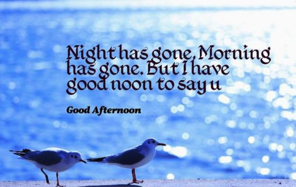 Picture: Night Has Gone Morning Has Gone