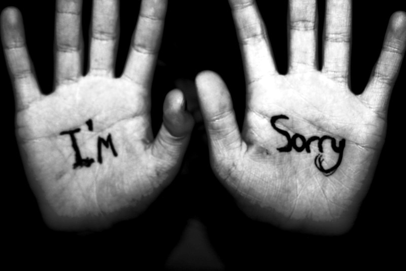 Picture: Im Sorry Pic