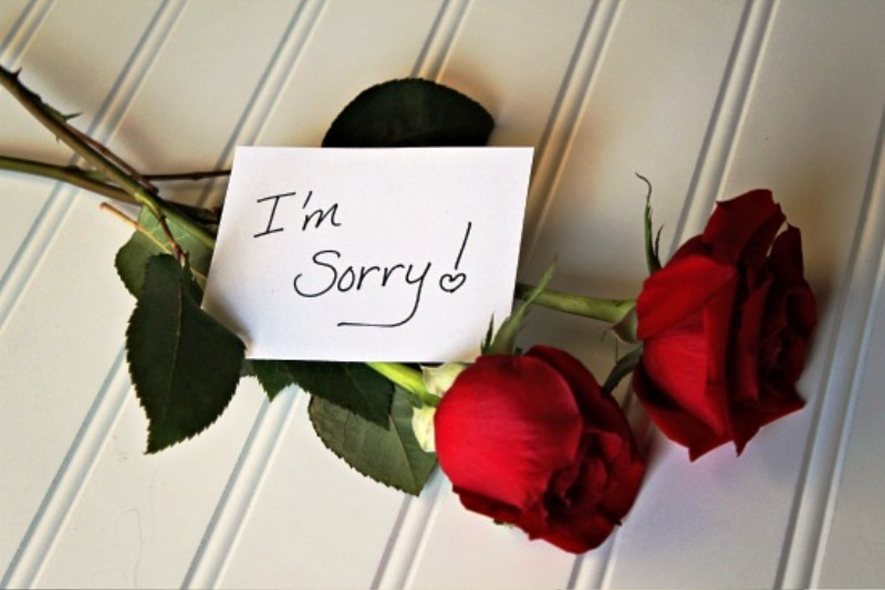 I'm Sorry With Roses