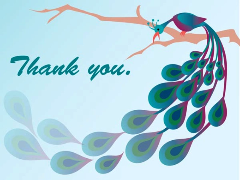 Thank You With Peacock
