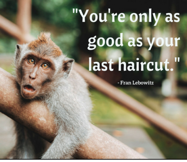 You Are Only As Good As Your Last Haircut