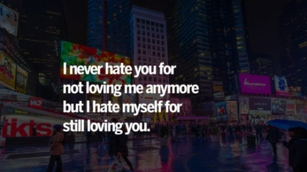 I Never Hate You