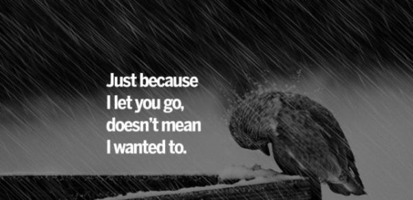Just Because I Let You Go
