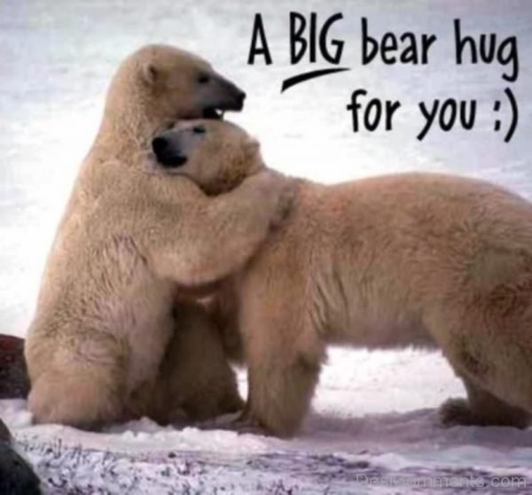 A Big Bear Hug For You-DC011