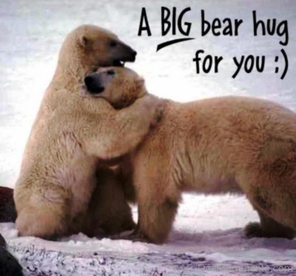 A Big Bear Hug For You- dc 77011