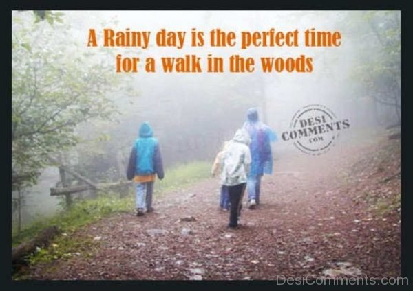 A Rainy Day Is The Perfect Time