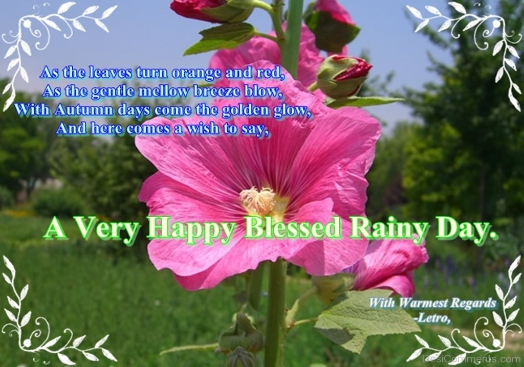 Blessed Rainy Day Quotes: Rain Pictures, Images, Graphics For Facebook, Whatsapp