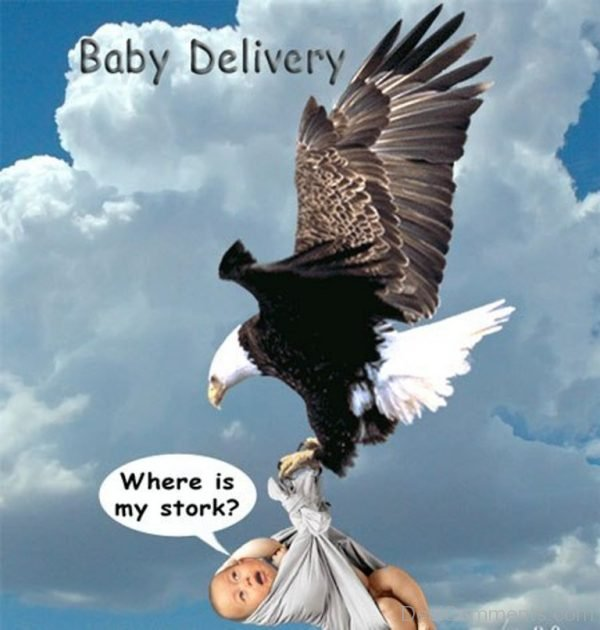 Baby In Courier-012