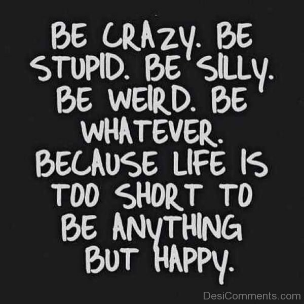 Be Crazy Be Stupid-Dc02