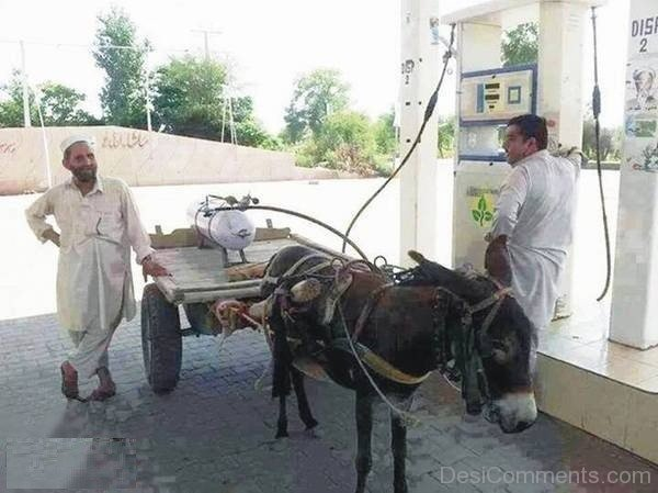 CNG Gas Driven Funny Donkey