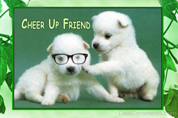 Funny Memes To Cheer Up A Friend : Cheer up u2013 friend cute pups desicomments.com