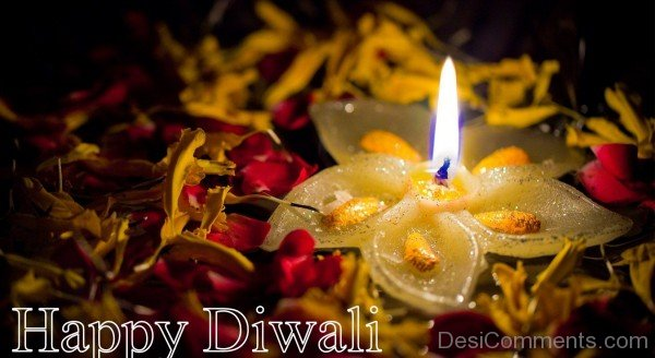 Diwali Celebrations-DC936DC30