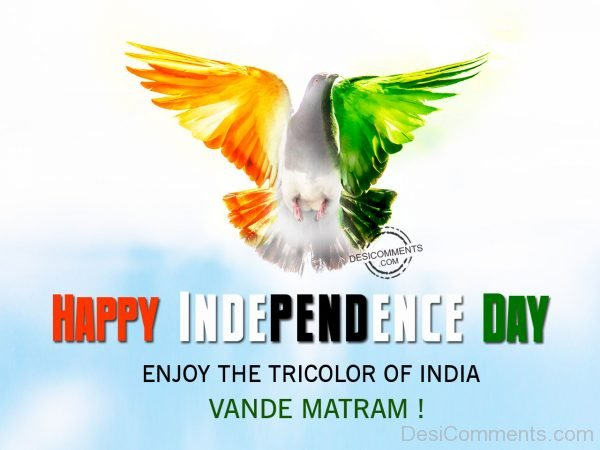 Enjoy the tricolor of india,Happy Independence Day